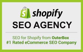 选择Shopify主题之前需要考虑的一些重要事项插图